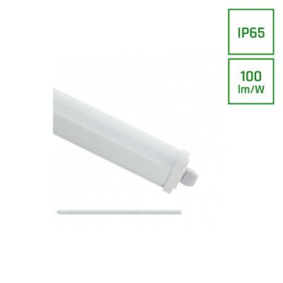 LIMEA ECO 2 LED 36W 230V 120CM IP65 CW